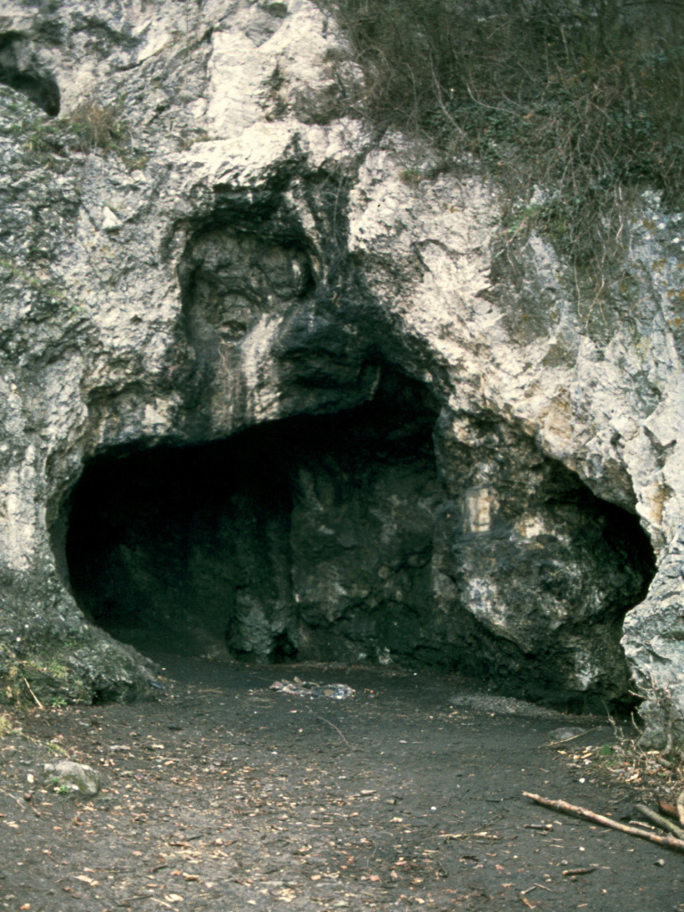 The Spy Cave site in Belgium from which several Neanderthal skeletons were excavated in 1886. Only one skeleton was used in this study.