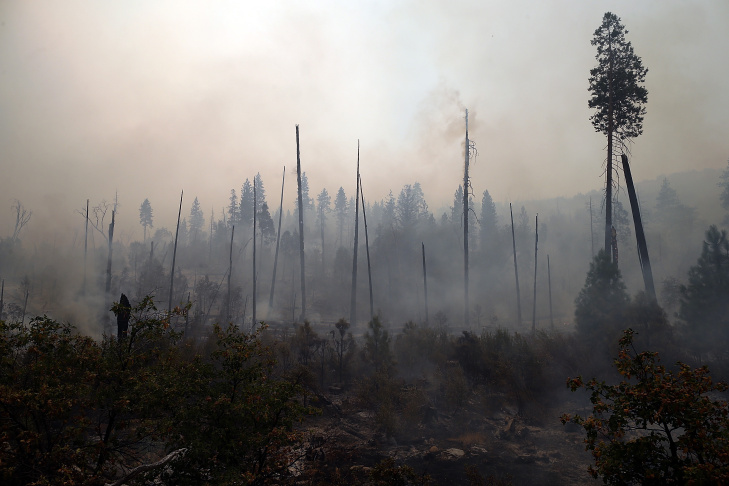 In this September 2013 photo provided by the U.S. Forest Service, Brad Rust, a soils scientist from the Burned Area Emergency Response team assesses a burn area in the Rim Fire near Yosemite National Park, Calif.