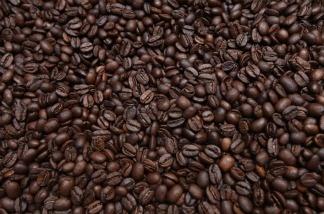 Freshly-roasted espresso coffee beans cool in a refurbished 1918 Probat coffee bean roaster.