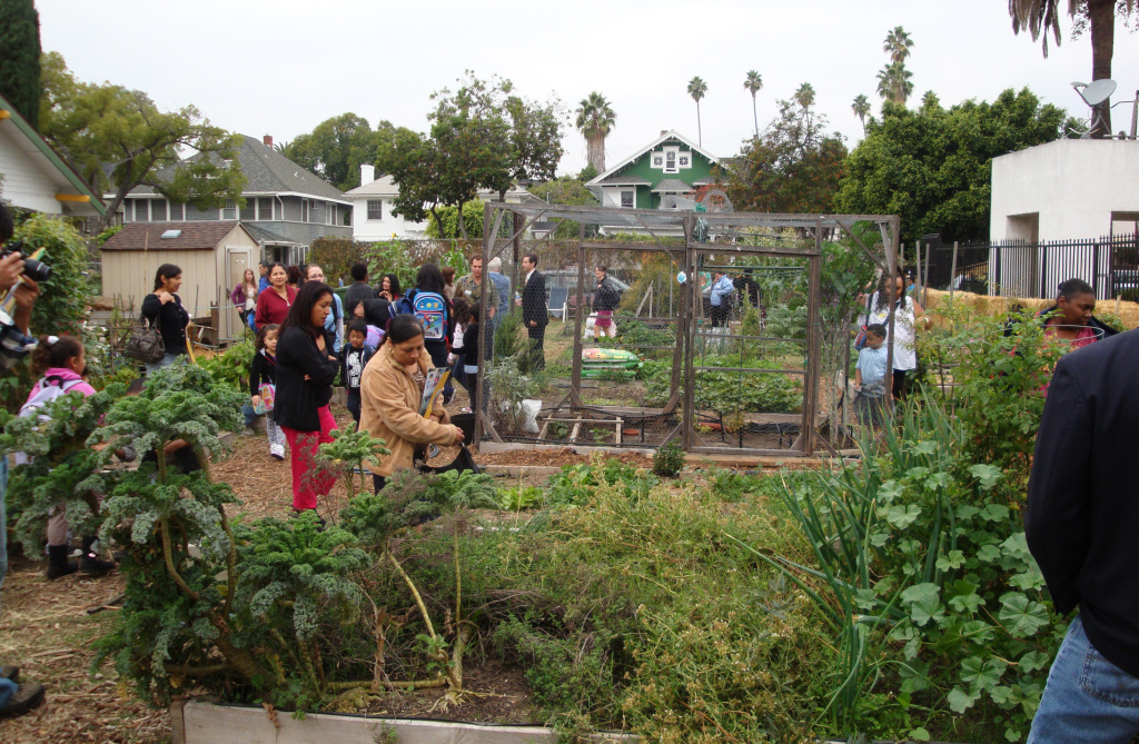 Community members explore the Raymond Avenue Neighborhood Garden.