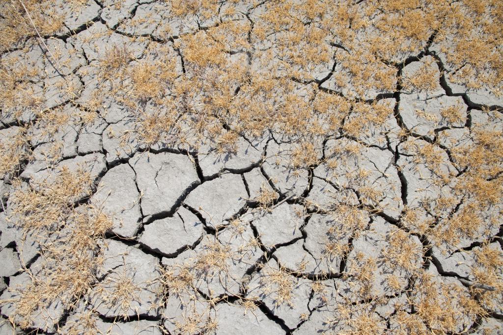File: Dry mud flats at the Kern Wildlife Refuge.