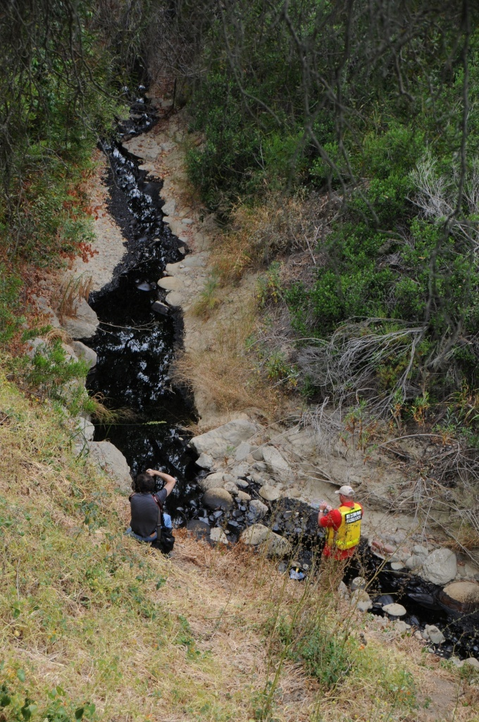 Sean Anderson, associate professor of environmental science and resource management at Cal State Channel Islands, samples crude oil from Hall Canyon outside Ventura on June 23, 2016 following an oil spill.