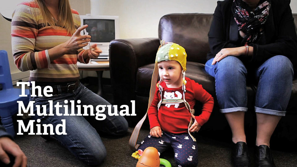 Find out what happens inside the brain as children are immersed in a multilingual education, and explore the infinite uses of multilingualism in a world with ever-evolving communications technology.