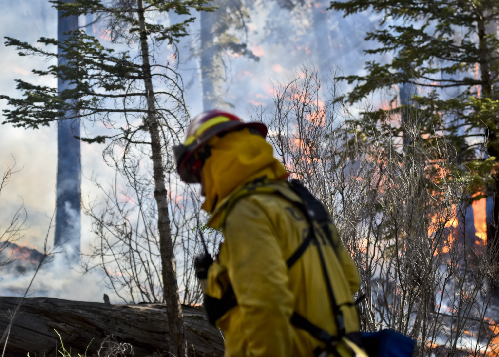 A Riverside City firefighter monitors a burnout operation along Jenks Lake Road Thursday afternoon at the Lake Fire.