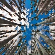 Instagram Challenge Earth Winner - stevenjay