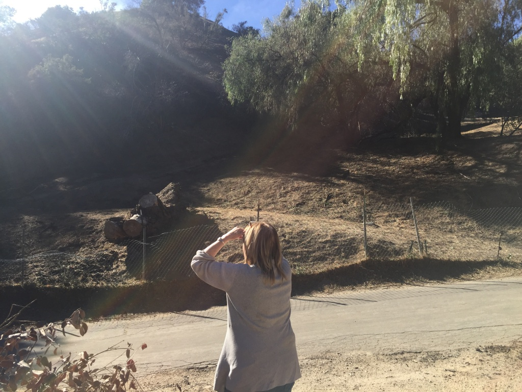 Carol Van Dusen surveys evidence of fire on the hillside next to her home in Kagel Canyon.