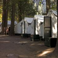 Yosemite Rodent Disease