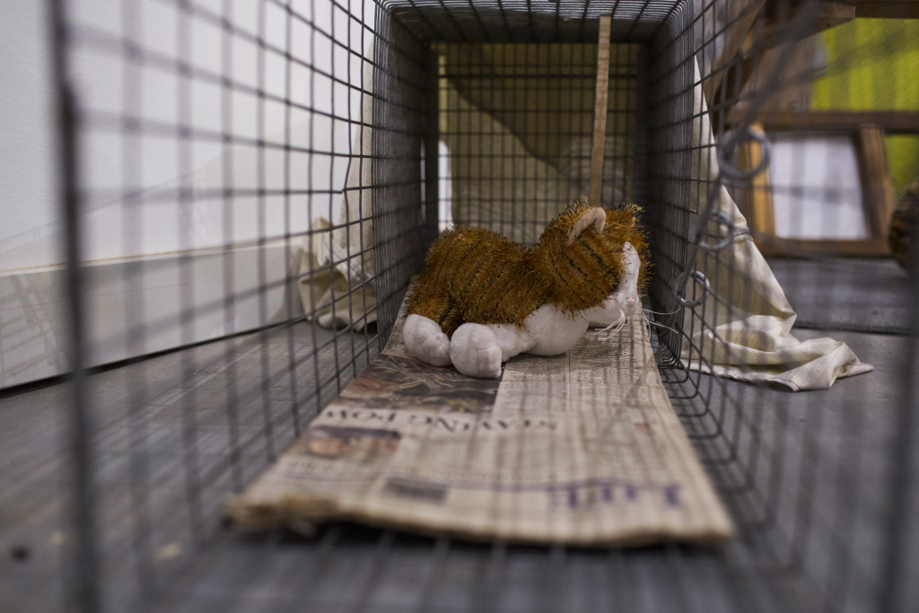 "Traps are on display in the ""Crazy Cat Ladies"" exhibition at The Animal Museum in the Arts District on Monday, Nov. 14, 2016. The section aims to educate museum-goers about trap-neuter-return programs."