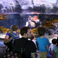 Aquarium of the Pacific.