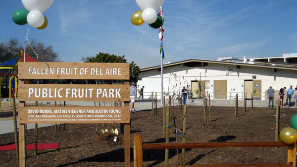 The new Del Aire Public Fruit Park in Los Angeles County includes 27 fruit trees and eight grapevines that the public can pick from and eat for free.