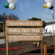 Public Fruit Park