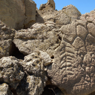 Oldest Petroglyphs
