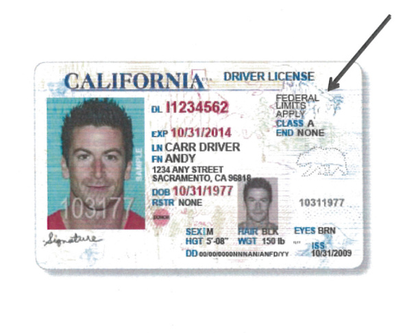 Forward' 'move Driver's Immigrant Dmv Licenses 3 89 California With Slideshow Kpcc To