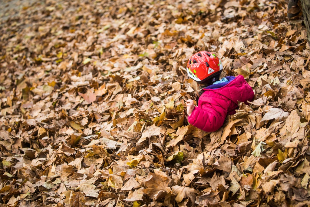A small girl plays in a pile of fallen leaves at the Guenthersburgpark public park in Frankfurt am Main, western Germany, on October 31, 2017.