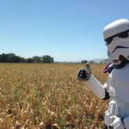 Kevin Doyle, dressed as a Storm Trooper, poses for a picture in Santa Cruz during his 501 Mile Walk in June 2015.