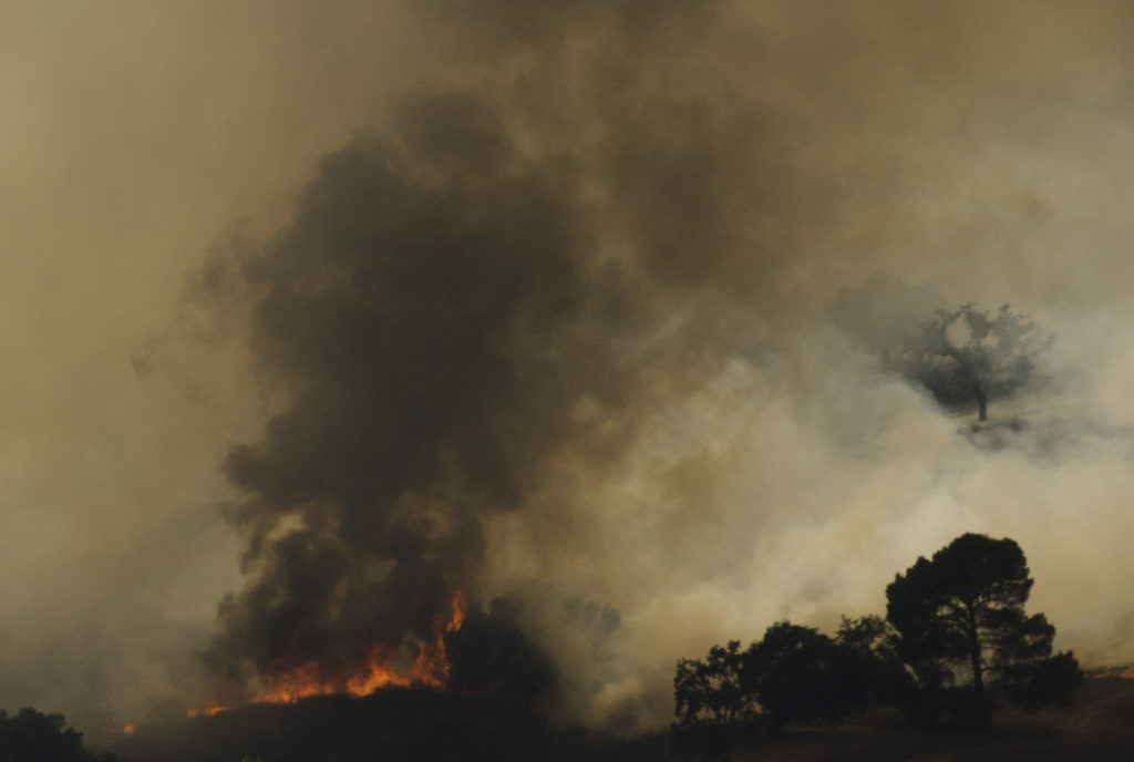 A brush fire burns a forest near Highway 101 and Calabasas on August 18, 2013 north of Los Angeles, California.