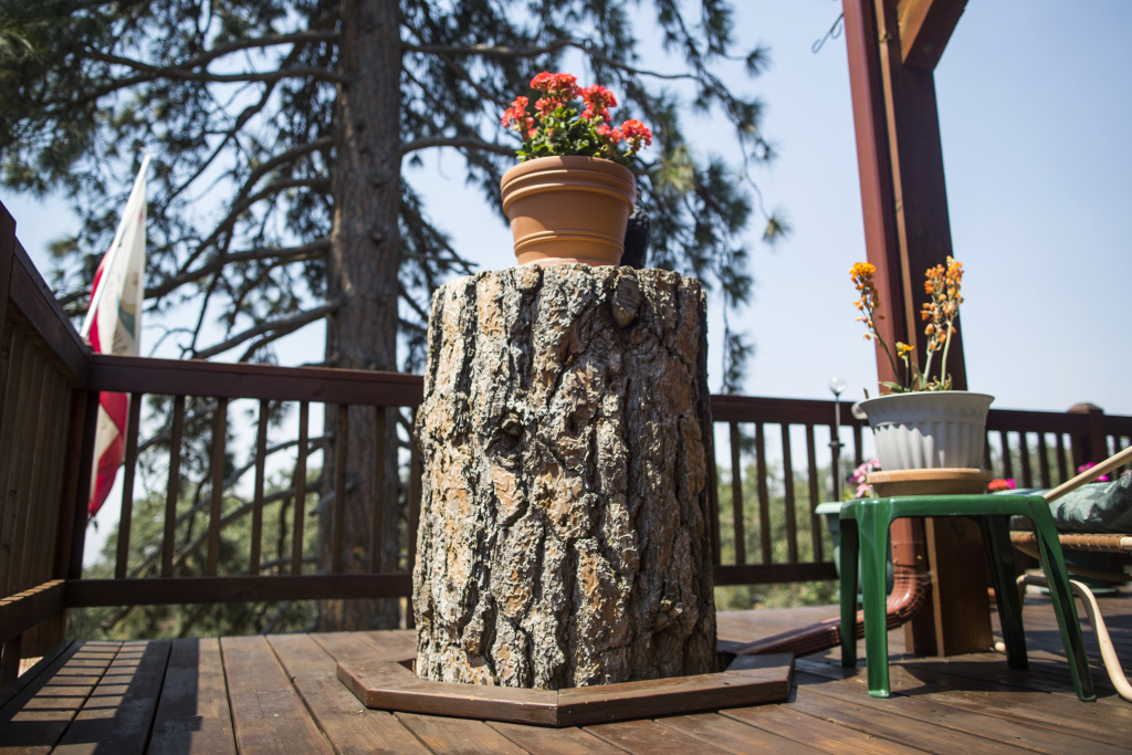 Bear Valley Springs resident Mark Anderson designed his deck around a Ponderosa Pine that later died from bark beetles. Anderson transformed the stump into a table.