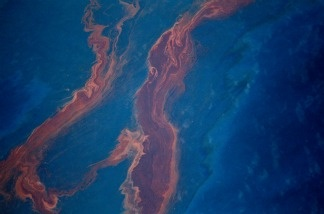 Crude oil leaked from the Deepwater Horizon wellhead sits on the surface of the water in the Gulf of Mexico on April 28, 2010 near New Orleans.