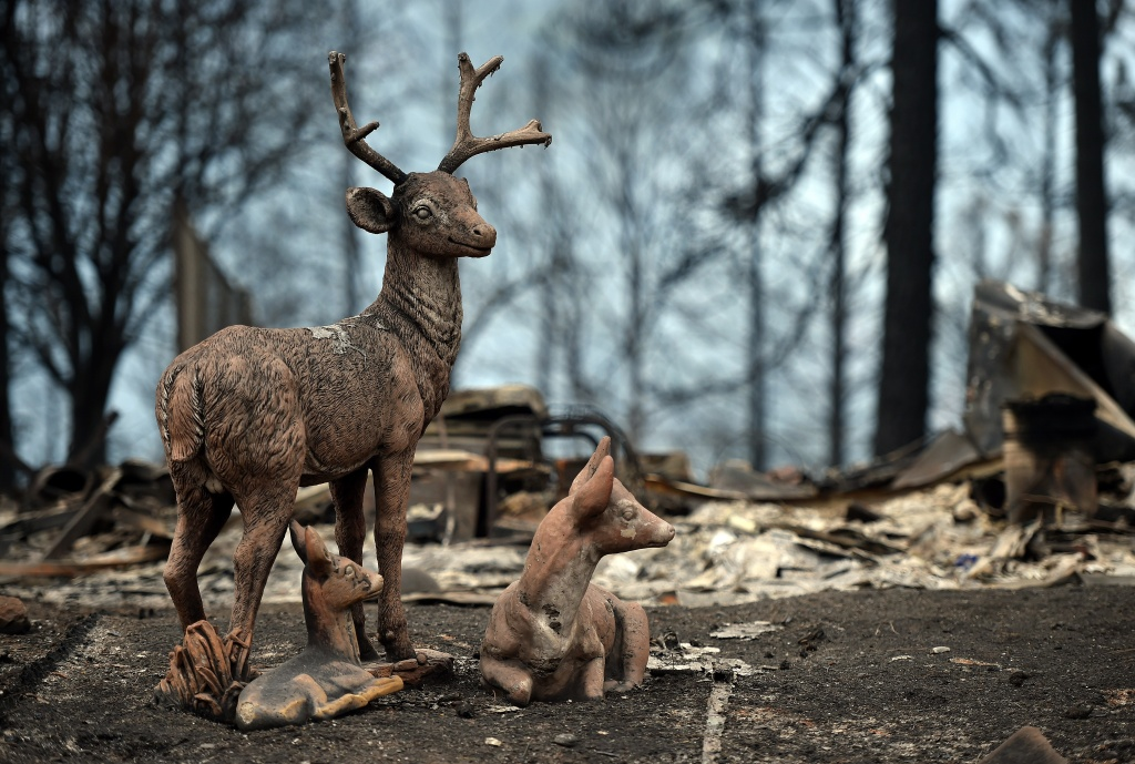 Sculptures of deer stand in a residential neighborhood destroyed by wildfires in Cobb, California, on September 15, 2015.