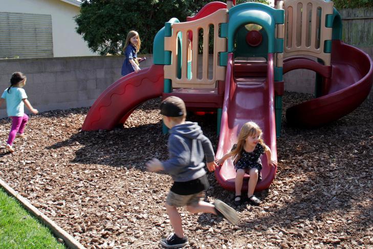 Zero Water Preschool Garden - 6