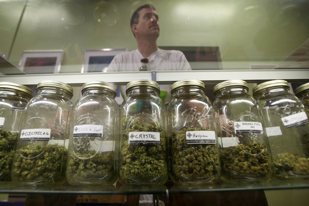 Dave Warden, a bud tender at Private Organic Therapy (P.O.T.), a non-profit co-operative medical marijuana dispensary, displays various types of marijuana.
