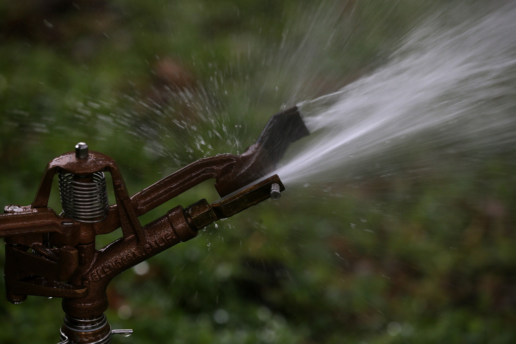 A sprinkler sprays water on a lawn at Golden Gate Park on January 29, 2014 in San Francisco, California.