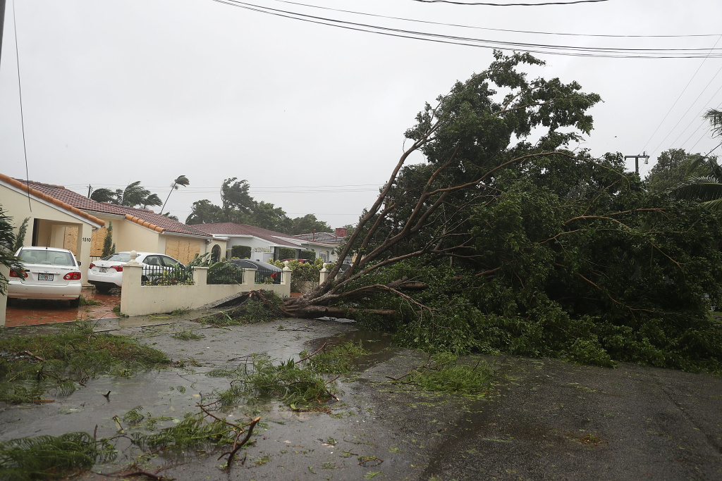 Trees and branches knocked down by the high winds of Hurricane Irma on September 10, 2017 in Miami, Florida.