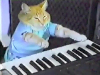 You can see classics of feline film like the masterpiece, Keyboard Cat, at the Cinefamily's feline film festival on Saturday.