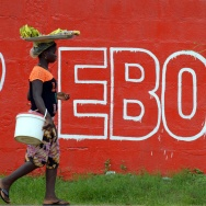 A seller of bananas walks past a slogan painted on a wall reading 'Ebola' in Monrovia on August 31, 2014.