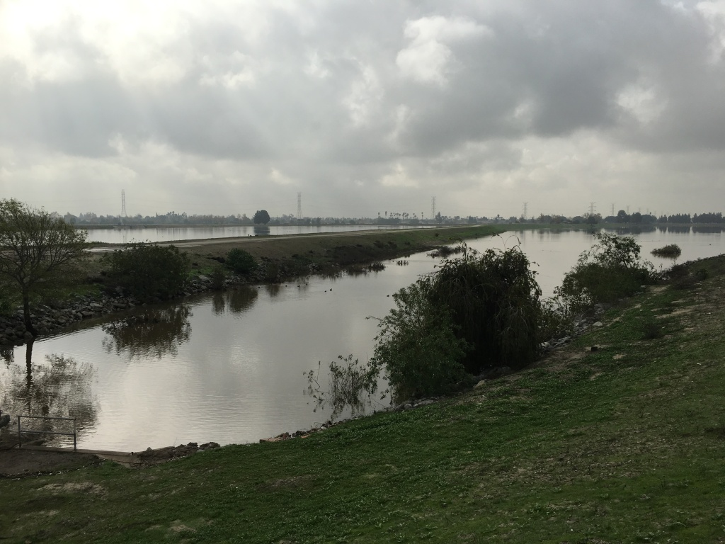 One of ten spreading basins that receive stormwater runoff from the Rio Hondo Channel for percolation into an underground aquifer.