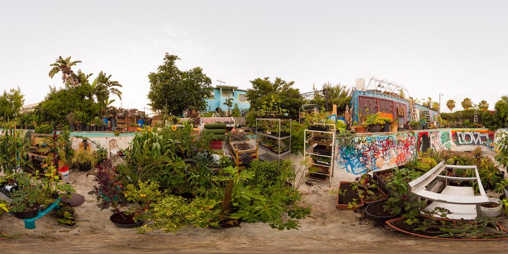 """The """"Gansta Garden"""" in South Central L.A., helmed by renegade gardener, Ron Finley."""