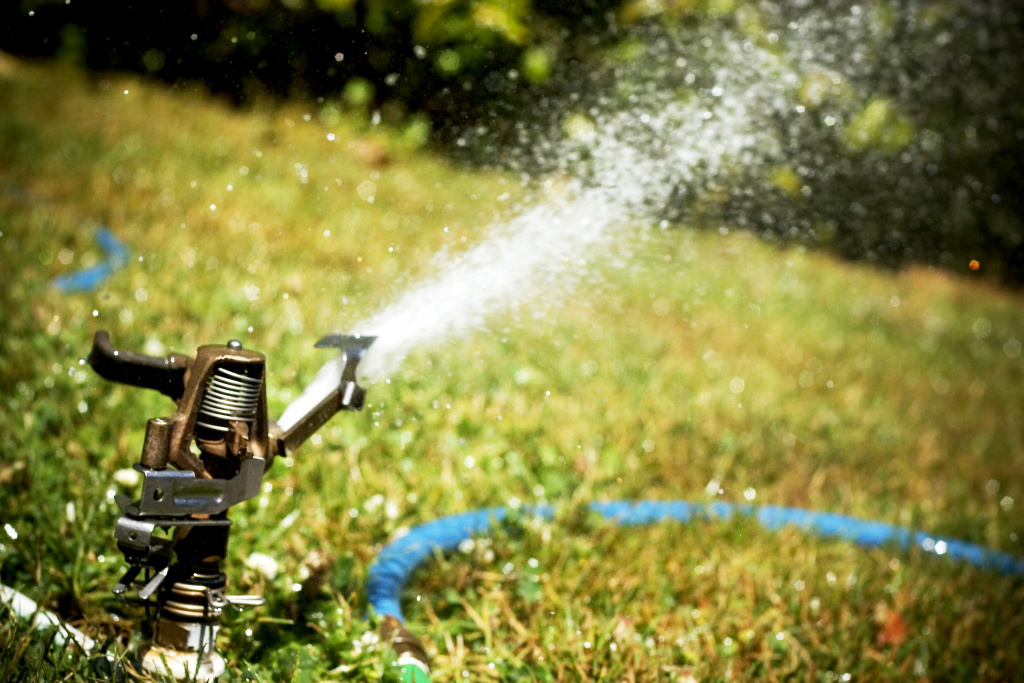 A sprinkler shoots water across a lawn. New restrictions take effect limiting outdoor water use in light of the drought.