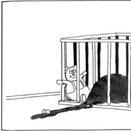 "One of 4,000 ""The Far Side"" panels Gary Larson drew over 14 years. The full collection is now out in paperback."