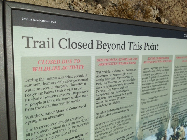 A sign tells visitors where the 49 Palms Oasis Trail in Joshua Tree National Park is closed, July 2015.