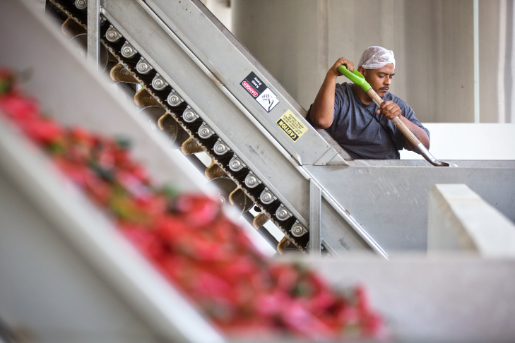 Twenty-eight-ounce bottles of Sriracha hot sauce are transported by conveyor belt to be packed and shipped inside Huy Fong Foods Inc. in Irwindale on Tuesday, Aug. 19.
