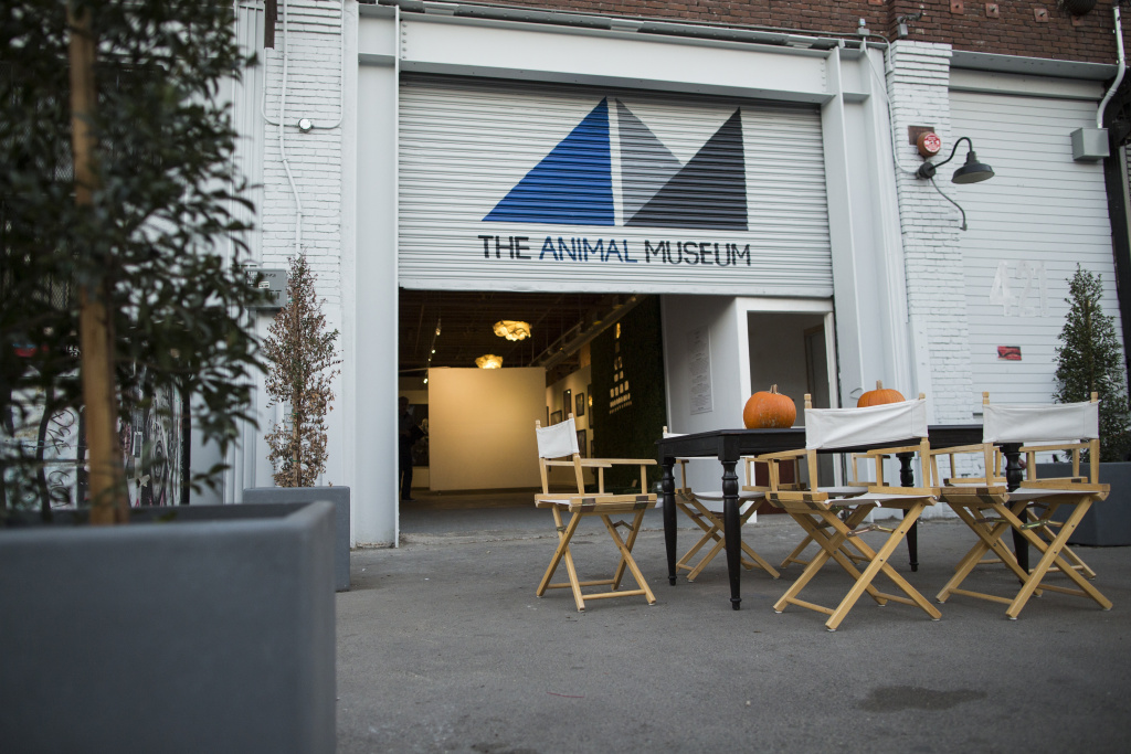 The Animal Museum in the Arts District has its grand opening on Saturday, Dec. 3, 2016. The museum is already open to the public and