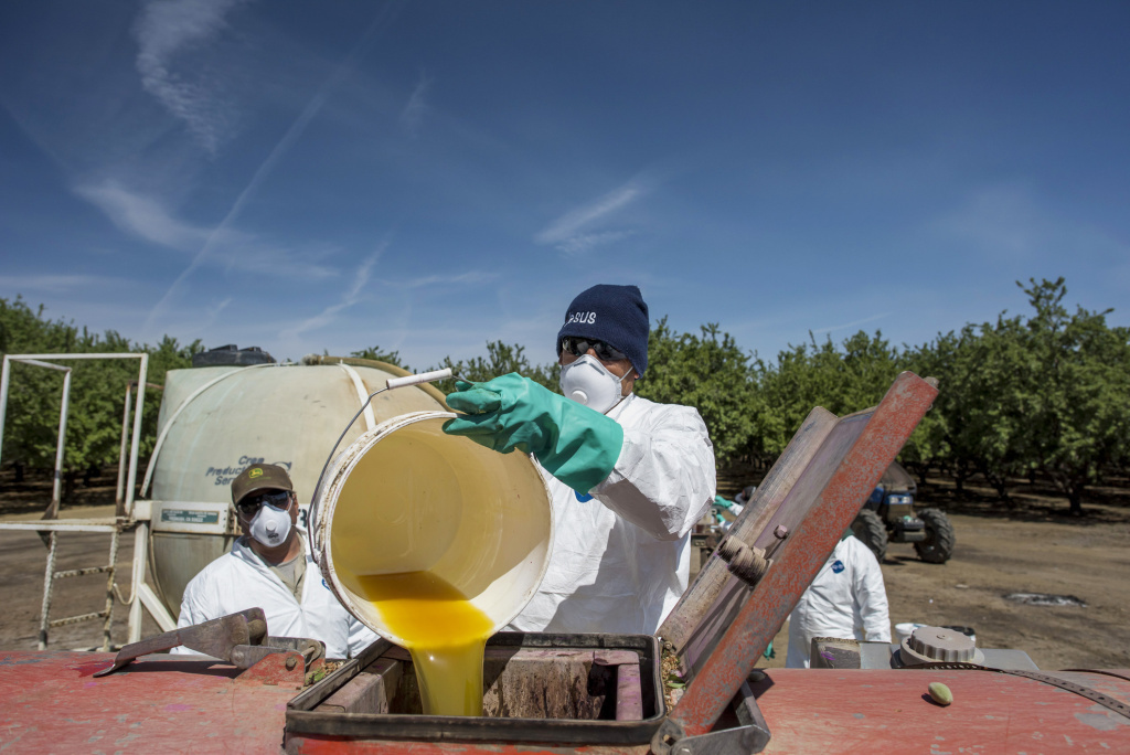 A worker pours a bucket of pesticide into a machine to be sprayed on almond trees at Del Bosque Farms Inc. in Firebaugh, Calif., on April 6, 2015. California and Washington already have adopted, through state regulation, many of the rules that the EPA now wants to put in place nationwide.