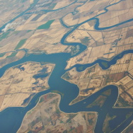 A group of public water agencies has asked the state to order farmers in the Sacramento-San Joaquin River Delta to stop irrigating their crops amid the relentless drought.