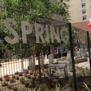 Spring Street park