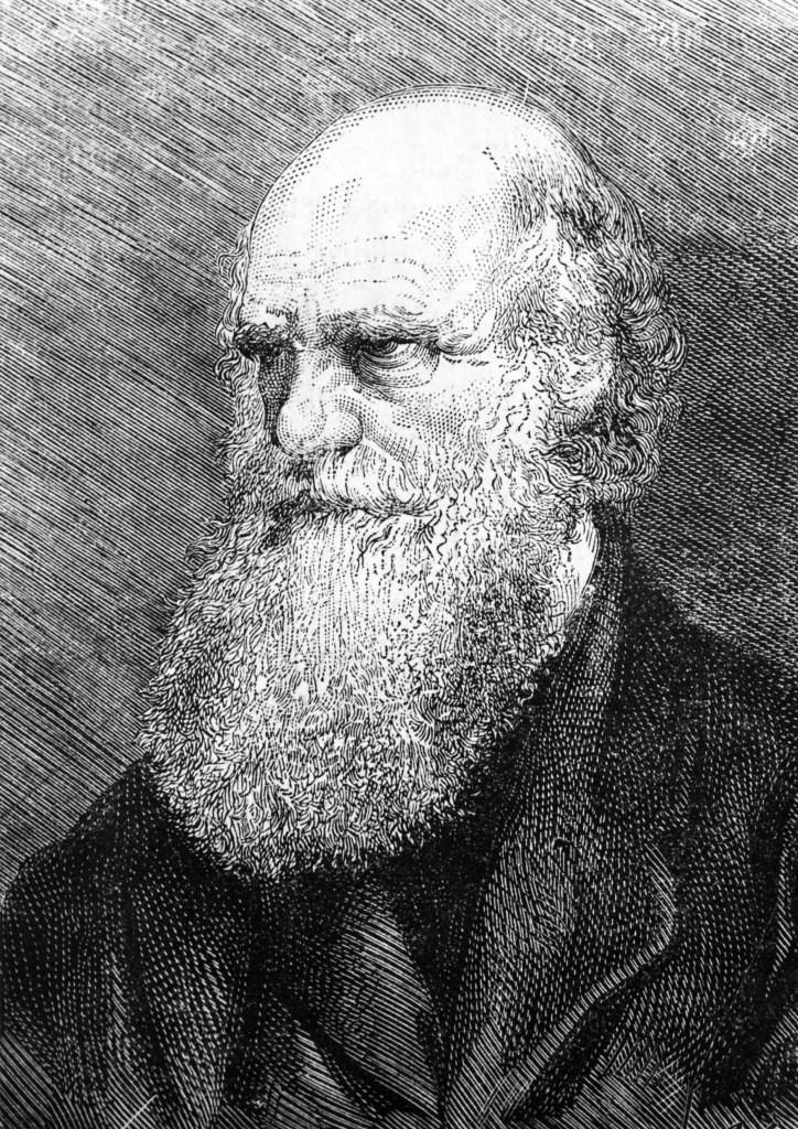 This undated engraving released on February 10, 1959 shows English naturalist Charles Darwin ( 1809-1882), father of the theory of evolution. With the passage of Tennessee State Bill SB 0893 teachers in Tennessee's public school classrooms who want to debate the validity of topics like the human influence on climate change and the theory of evolution can now do so.