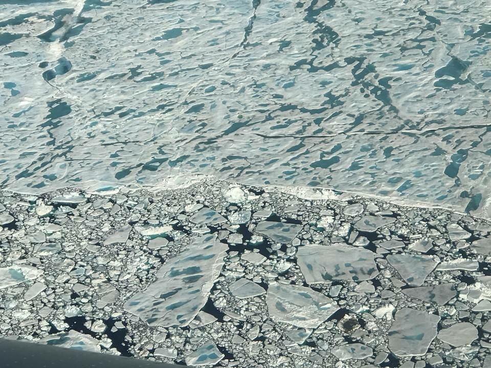 Melt ponds dot a stretch of sea ice in the Arctic Ocean, north of Greenland, as seen during an Operation IceBridge flight on July 24.