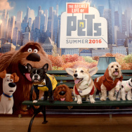 Oscar the Frenchie, Wally the Corgi, Ralphie the Cockapoo and Tinkerbelle the Dog attend The Secret Life of Pets toy line reveal at Toy Fair on February 13, 2016 in New York City.