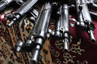Do terrorists have the right to purchase guns?