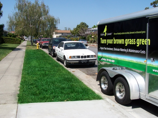 A crew with Green Canary, a company that produces paint for dry grass, applies paint to a lawn.