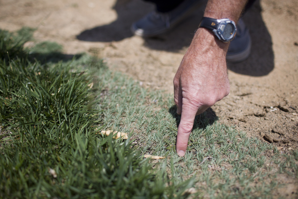You may be able to earn money from your water district for replacing your lawn with a drought-friendly yard. But first, you'll need to get that lawn approved.