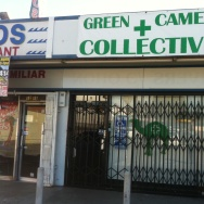 Green Camel Collective