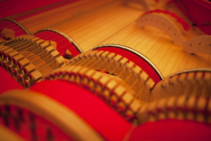 POLAND-MUSIC-LEONARDO-DA-VINCI