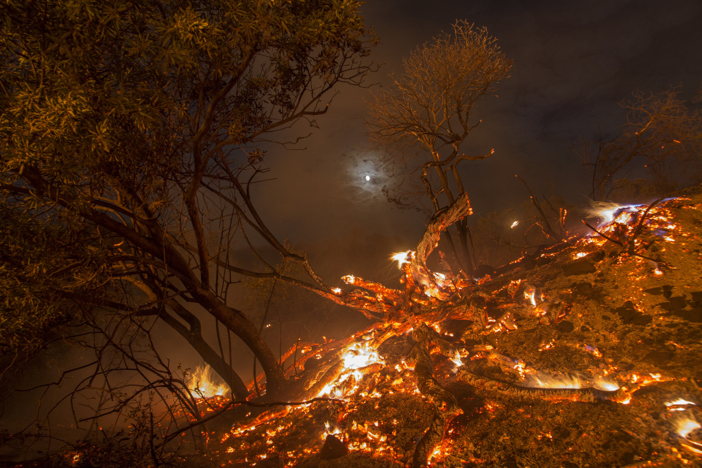 Flames spread on a moonlit night at the La Tuna Fire on September 2, 2017 near Burbank.