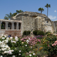 Though Mission San Juan Capistrano is popularly known for the annual return of swallows, the birds have made their nests elsewhere in recent years. But a bird expert is trying to 'seduce' the birds to return.