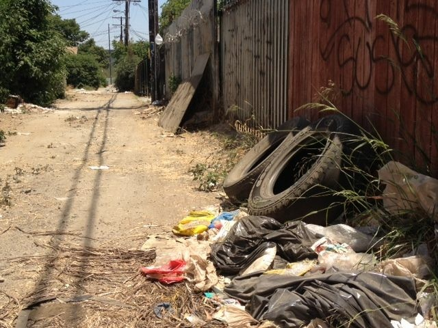Trash pile-ups are common in the alleys that the Trust for Public Land are looking beautify, says Tori Kjer, a program manager for the organization.